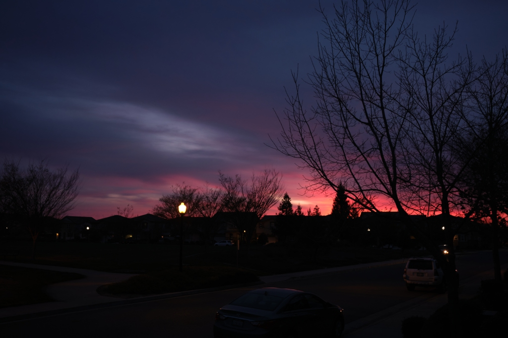 The last of a sunset, with the sun below the horizon and the sky is filled with deep red and purple hues. A silhouette of a tree and bare branches frames the right side.